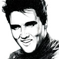 Elvis by Lin Petershagen