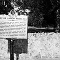 Elvis Presley Marker Nameplate And Low Wall Outside Graceland Memphis Tennessee Usa by Joe Fox