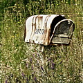 Empty Mailbox At 35476 by Gwyn Newcombe