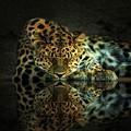 Endangered by Gene Praag