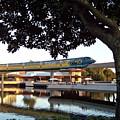 Epcot Tron Monorail by Carol  Bradley
