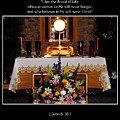 Eucharist I Am The Bread Of Life by Rose Santuci-Sofranko