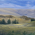 Evening Near Kamloops by Imagine Art Works Studio