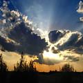 Evening Sky by Steve Karol