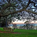 Fairhope Swing On The Bay by Michael Thomas