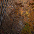 Fall At Amicalola Falls by Gregory Colvin