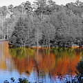 Fall Reflection by Don Prioleau