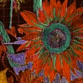 Fall Sunflower by Margie  Byrne