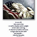 Fallen Patriot by Carolyn Staut