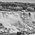 Falls Black And White by Traci Cottingham