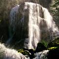Falls Creek Falls by Albert Seger