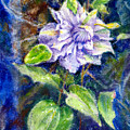 Fancy Clematis by Bill Meeker
