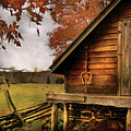 Farm - Barn - Shed Out Back by Mike Savad