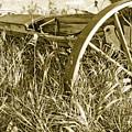 Farm Equipment At Rest by Linda McRae