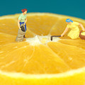 Farmers On Orange by Paul Ge