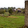 Farmland by Douglas Barnett