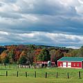 Farmland by Steven W Rand