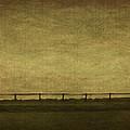 Farscape by Evelina Kremsdorf