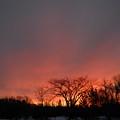 February Morning Red Sky by Kent Lorentzen