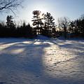February Pine Tree Shadows by Kent Lorentzen
