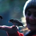 Feeding Birds In Hyde Park by Carl Purcell