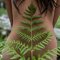 Fern And Woman by Scott Sawyer