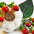 Festive Garlic by Sarah Loft