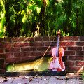 Fiddle On The Garden Wall by Bill Cannon