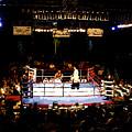 Fight Night by David Lee Thompson