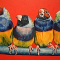Finches by Debbie Sampson