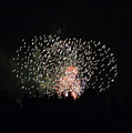 Firework Silhouettes by Carmen Hooven