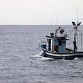 Fishermen by Jouko Lehto