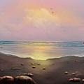 Fishermen's Cove by Sena Wilson