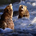 Fishing Alaska by Bill Stephens