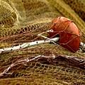 Fishing Net by Darkus Photo