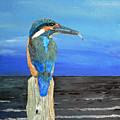 Fishing Post Kingfisher Of Eftalou. by Eric Kempson