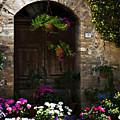 Floral Adorned Doorway by Marilyn Hunt