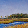 Florida Marsh In June by Susan Jenkins