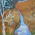 Florida Marshland by Warren Thompson