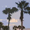 Florida Queen Palm Trees   by Allan  Hughes