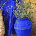 Flower Pots In Crete by Steve Outram