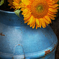 Flower - Sunflower - Little Blue Sunshine  by Mike Savad