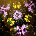 Flowers Thru Kaleidiscope by Marilyn Hunt