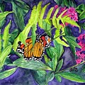 Fluttering By  by Karla Mathey