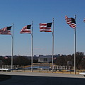 Flying Proudly by Veron Miller