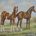 Foals In Pasture by Dorothy Coatsworth
