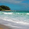 Foamy Surf by Frank Wilson