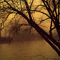 Fog In The Morning. by Itai Minovitz