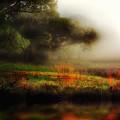 Foggy Morning Mill Pond by John Warren