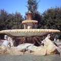 Fontana Dei Cavalli Marini  by Fabrizio Ruggeri